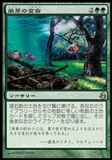 Magic the Gathering Morningtide JAPANESE Single Scapeshift - SLIGHT PLAY (SP)