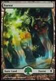 Magic the Gathering Zendikar Single Basic Forest (248) FOIL - SLIGHT PLAY (SP)