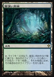 Magic the Gathering Zendikar JAPANESE Single Misty Rainforest - NEAR MINT (NM)