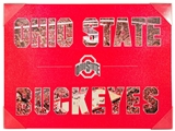 Artissimo Ohio State Buckeyes Color Pride 24x18 Canvas