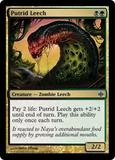 Magic the Gathering Alara Reborn Single Putrid Leech Foil