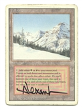 Magic the Gathering 3rd Ed. Revised Single Taiga ARTIST SIGNED - HEAVY PLAY (HP)