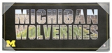 Artissimo Michigan Wolverines Wordmark Team Pride 26x12 Canvas