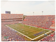 University of Florida Gators Artissimo Ben Hill Griffin Stadium 24x18 Canvas