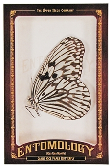 2011 Upper Deck Goodwin Champions #ENT21 Giant Rice Paper Butterfly Entomology