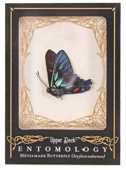 2009 Upper Deck Goodwin Champions #ENT3 Metalmark Butterfly Entomology
