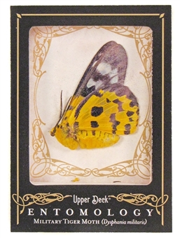 2009 Upper Deck Goodwin Champions #ENT16 Military Tiger Moth Entomology