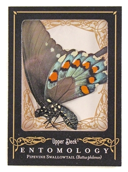 2009 Upper Deck Goodwin Champions #ENT13 Pipevine Swallowtail Entomology SP