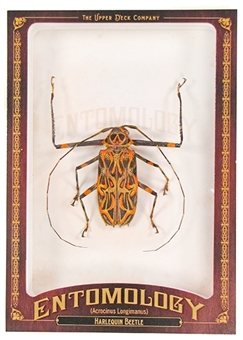 2011 Upper Deck Goodwin Champions #ENT28 Harlequin Beetle Entomology