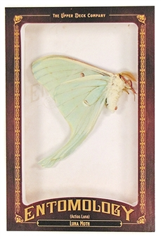 2011 Upper Deck Goodwin Champions #ENT16 Luna Moth Entomology