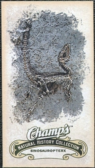 2008/09 Upper Deck Champ's Mini #C450 Sinosauropteryx