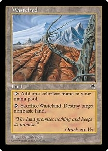 Magic the Gathering Tempest Single Wasteland - MODERATE PLAY (MP)