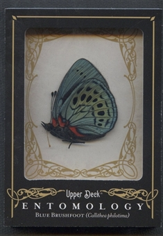 2009 Upper Deck Goodwin Champions #ENT7 Blue Brushfoot Entomology
