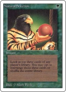 Magic the Gathering Unlimited Single Natural Selection - SLIGHT PLAY (SP)