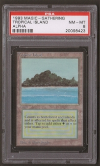 Magic the Gathering Alpha Single Tropical Island PSA 8