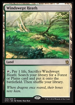 Magic the Gathering Khans of Tarkir Single Windswept Heath NEAR MINT (NM)