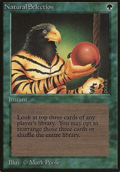 Magic the Gathering Beta Single Natural Selection - MODERATE PLAY (MP)