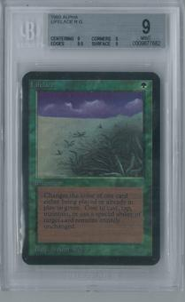 Magic the Gathering Alpha Lifelace Single BGS 9 (9, 9, 9.5, 9)