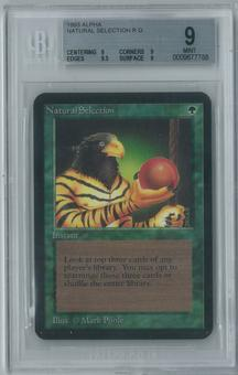 Magic the Gathering Alpha Natural Selection Single BGS 9 (9, 9, 9.5, 9)