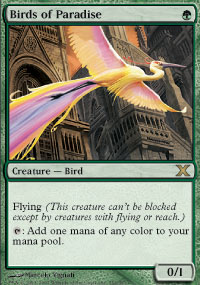 Magic the Gathering 10th Edition Single Birds of Paradise LIGHT PLAY (NM)