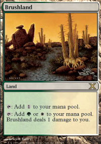 Magic the Gathering 10th Edition Single Brushland Foil