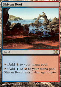 Magic the Gathering 10th Edition Single Shivan Reef Foil
