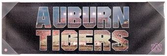 Auburn Tigers Artissimo Team Pride 30x10 Canvas
