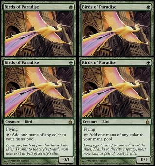 Magic the Gathering Ravnica: City of Guilds PLAYSET Birds of Paradise FOIL-NEAR MINT (NM)