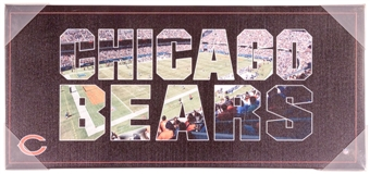 Chicago Bears Artissimo Color Pride 12x26 Canvas