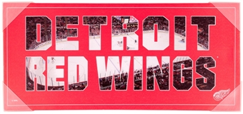 Detroit Red Wings Artissimo Color Pride 12x26 Canvas