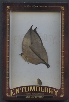 2011 Upper Deck Goodwin Champions #ENT24 Dead Leaf Butterfly Entomology