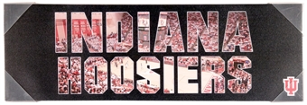 Indiana Hoosiers Artissimo Team Pride 10x30 Canvas