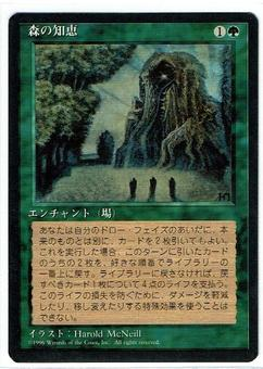 Magic the Gathering 5th Ed FBB Japanese Single Sylvan Library - NEAR MINT (NM)