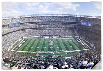 New York Jets Stadium MetLife 22x33 Artissimo