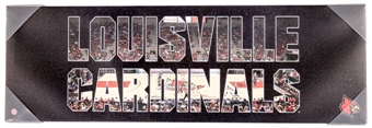 Louisville Cardinals Artissimo Team Pride 30x10 Canvas