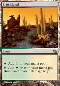 Magic the Gathering 9th Edition Single Brushland UNPLAYED (NM/MT)