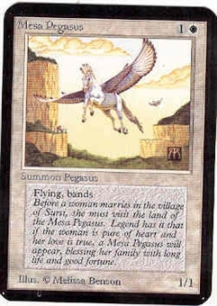 Magic the Gathering Alpha Single Mesa Pegasus UNPLAYED (NM/MT)