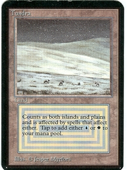 Magic the Gathering Alpha Single Tundra - NEAR MINT (NM)