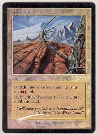 Magic the Gathering Promo Single Wasteland PLAYER REWARDS FOIL - NEAR MINT (NM)