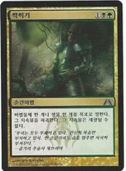 Magic the Gathering Dragon's Maze Single Putrefy - Korean - NEAR MINT (NM)