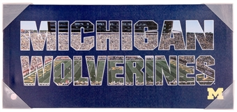 Michigan Wolverines Artissimo Color Pride 12x26 Canvas