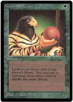 Magic the Gathering Beta Single Natural Selection - SLIGHT PLAY (SP)