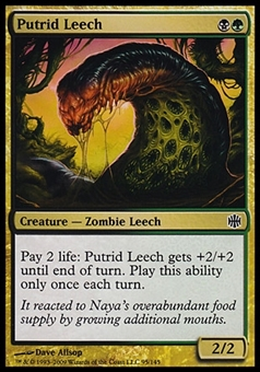 Magic the Gathering Alara Reborn Single Putrid Leech FOIL - SLIGHTLY PLAYED (SP)