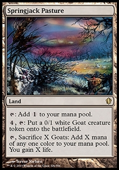 Magic the Gathering Eventide Single Springjack Pasture FOIL - SLIGHT PLAY (SP)