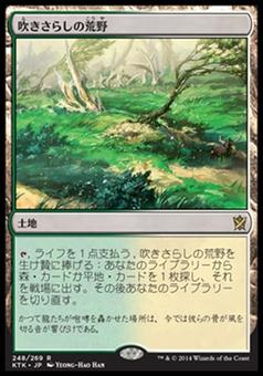 Magic the Gathering Khans of Tarkir JAPANESE Single Windswept Heath - SLIGHT PLAY (SP)