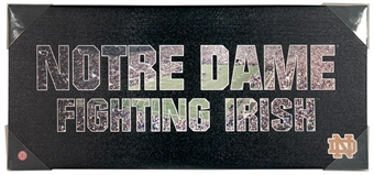 Notre Dame Fighting Irish Artissimo Team Pride 12x26 Canvas