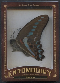 2011 Upper Deck Goodwin Champions #ENT5 Painted Jay Entomology
