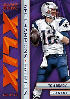 2015 Panini New England Patriots  Super Bowl XLIX AFC Champions Set