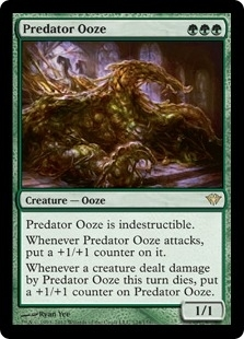 Magic the Gathering Dark Ascension Single Predator Ooze - NEAR MINT (NM)