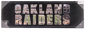 Oakland Raiders Artissimo Team Pride 12x26 Canvas
